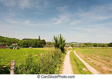holandês, agricultura, paisagem