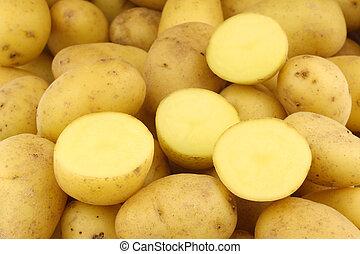 holandês, semente, batatas