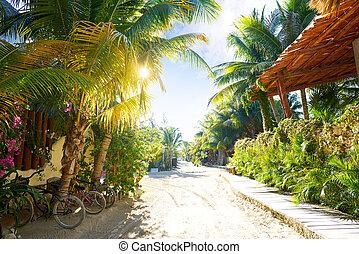 Holbox Island street Quintana Roo Mexico - Holbox tropical...