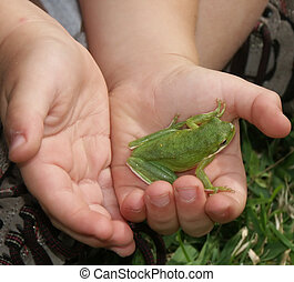 Holding a frog