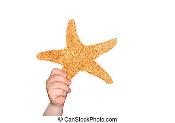 Holding a Starfish
