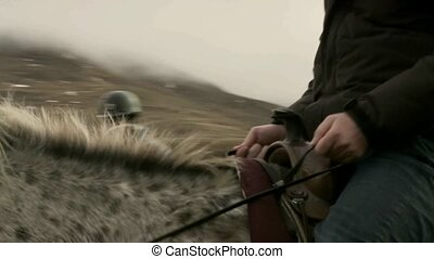 Holding onto reins of horse.