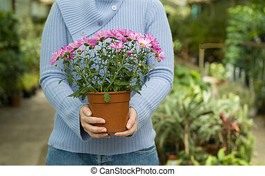 Holding Plant in Hands - Young Lady Standing in Hothouse ...