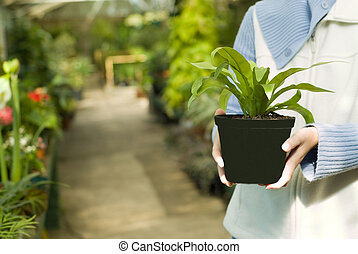 Holding Selected Plant in Hands