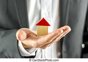 Holding wooden toy house
