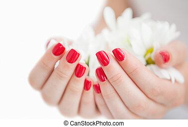 holdingshanden, manicured, bloemen