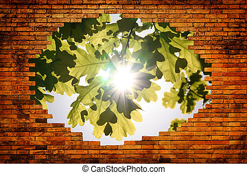 Hole in old brick wall with view on Leaves of oak and the sun