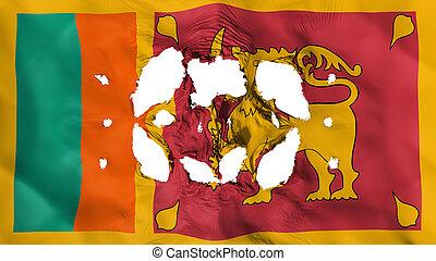 Holes in Sri Lanka flag