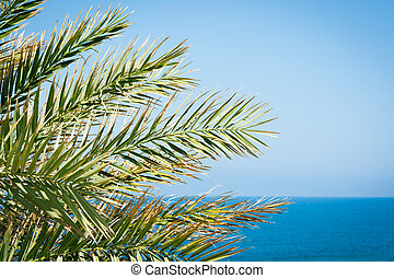 Holiday background: palm leaves against blue sky and azure sea