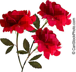 Holiday background with red three roses. Vector
