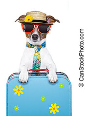 holiday dog - dog on holidays with luggage ,funny tie and...