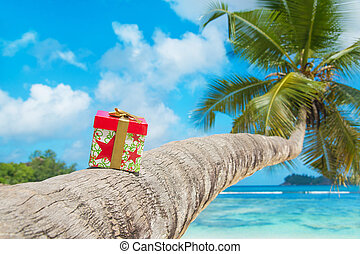 Holiday gift box with bow on coconut palm tree at exotic...