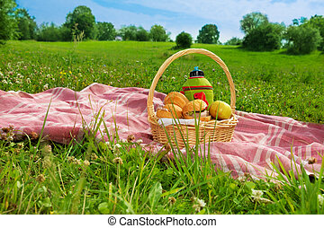 holiday picnic in park - holiday picnic on green grass in ...