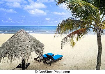 holiday., plage