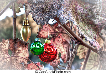 Holiday season in the vineyard. Decorations hung on vine...