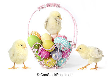 Holiday Themed Image With Baby Chicks and Eggs