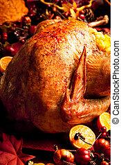 Holiday Turkey - Turkey in Fall surroundings accompanied by...