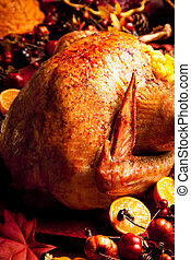 Holiday Turkey - Turkey in Fall surroundings accompanied by...