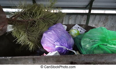 Holiday waste after Christmas. Christmas tree in garbage...