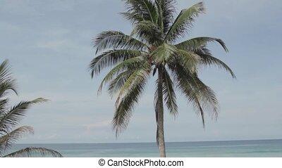 Holidays in Phuket