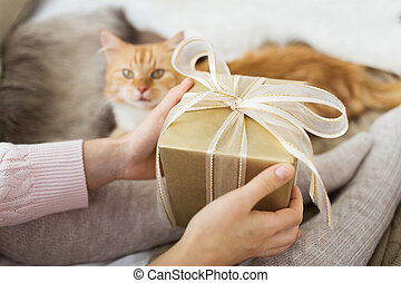 close up of female hands holding christmas gift