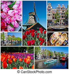 holland collage - a collage of seven photos