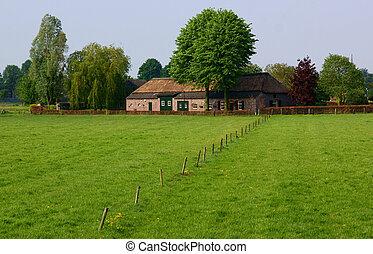 hollandse, boerderij