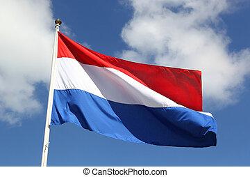 hollandse, nationale vlag, op, vrijheid, dag