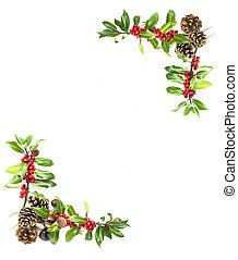 holly berries, borda, vermelho
