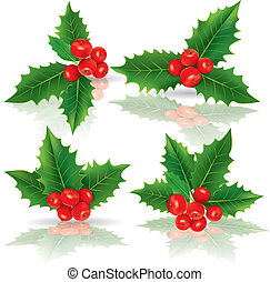 Holly berries. Contains transparent objects. EPS10