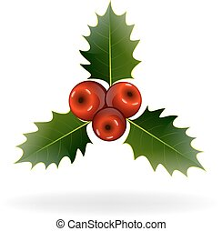 Holly berries on white background. Christmas decorations