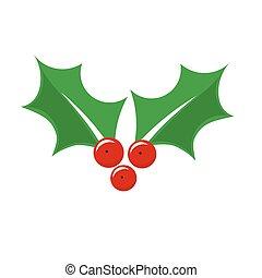 Holly berry Christmas plant symbol.