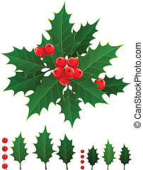 Holly berry - Christmas branch of holly berries and green...