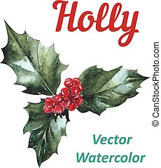 Holly berry icon Christmas symbol Vector - Holly berry icon,...