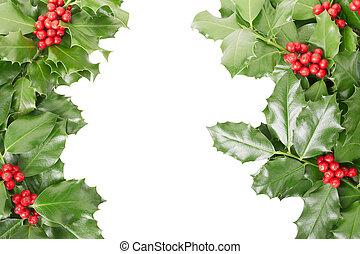 Holly border, Christmas decoration