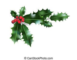 Holly Christmas decoration