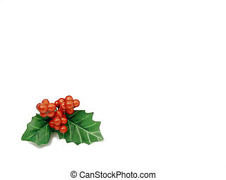 Holly leaves and berries isolated on white