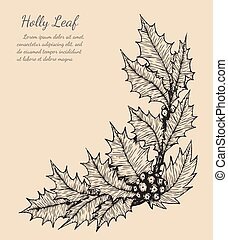 holly leaf sketch by hand drawing