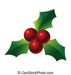 Holly sprig on white background illustration