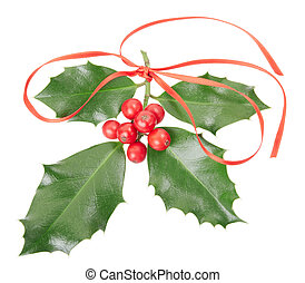 Holly with red ribbon