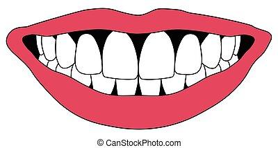 Hollywood smile white teeth