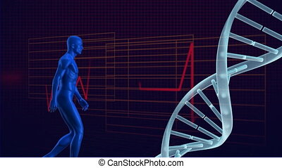 Holographic man walking towards a DNA molecule against an electrocardiogram background