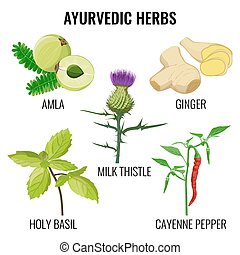 Holy basil, cayenne pepper, milk thistle, ginger root and...