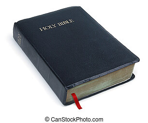 Holy Bible - Bible on white background