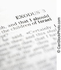 Holy Bible Exodus.