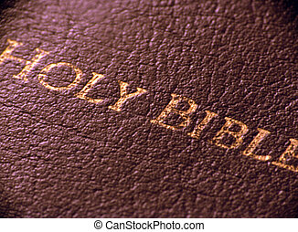 Holy Bible - Leather Bible