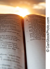 Holy Bible open at sunset with highlight on Malachi 4:2. Background with sun and clouds. Vertical shot