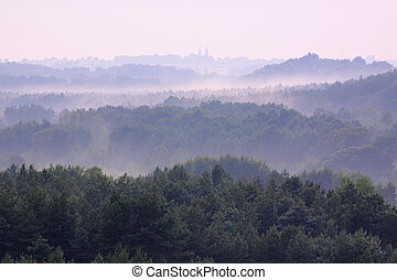 Holy Cross Mountains, Poland - Misty forests in Holy Cross...