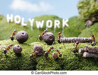 Holywork hills, teamwork, Ant Tales - ants teamwork at...