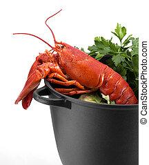 homar, czerwony